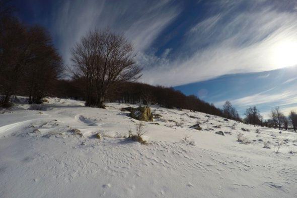 Ski de tura Domasnea (3/9)