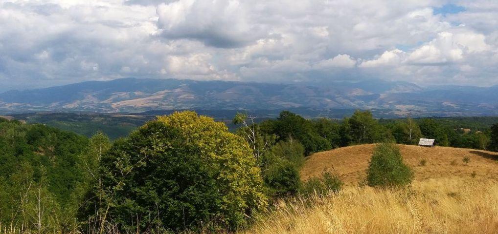 Pe dealuri bănăţene