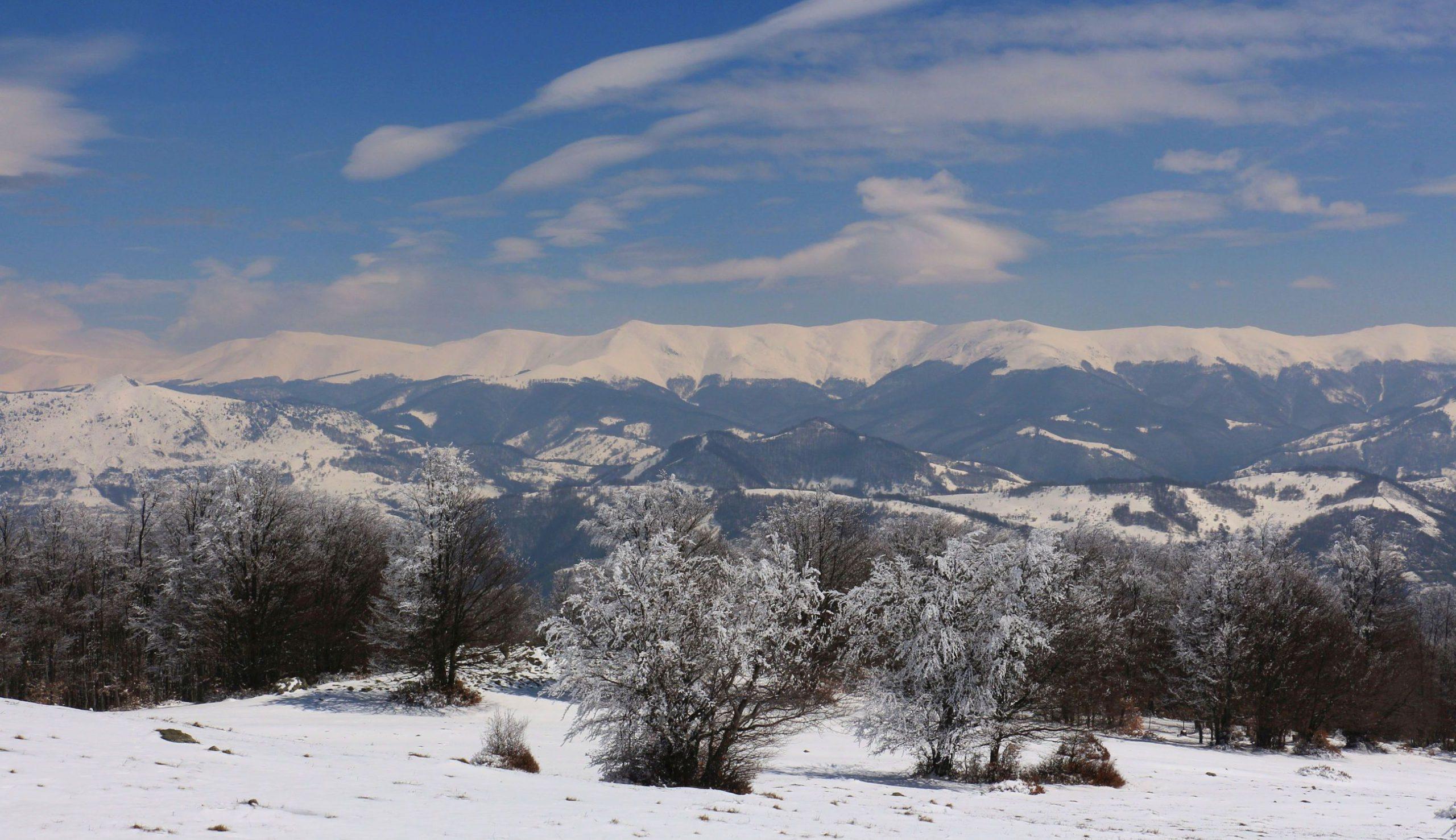 Zăpadă de aprilie