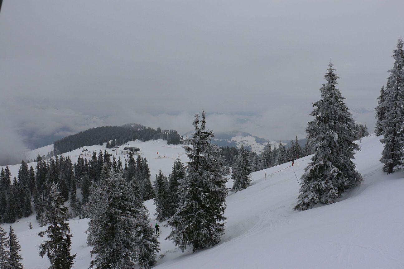 Scheffau-Ellmau-Skiwelt