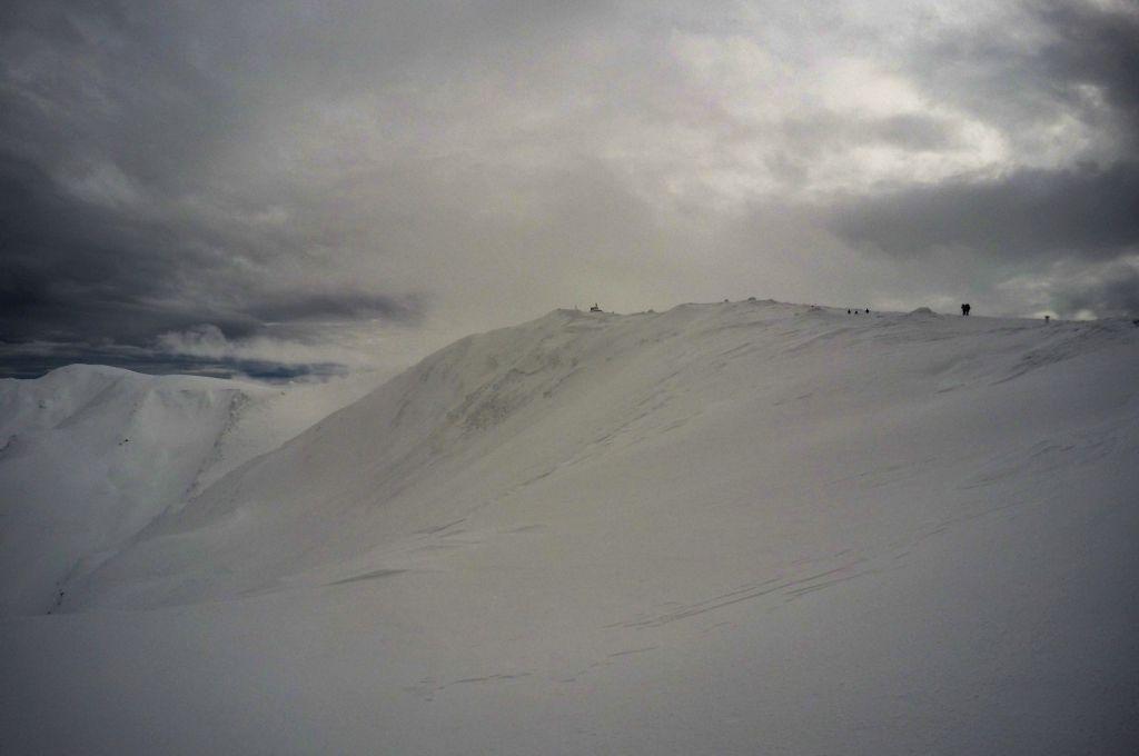 Tarcu schi de tura